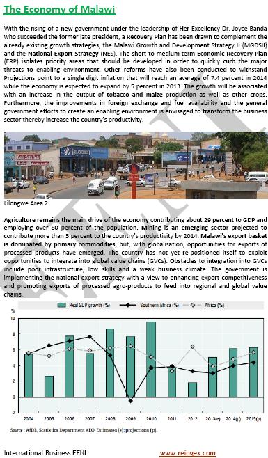Master Curs: Comerç exterior i negocis a Malawi